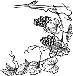 pobarvanke-hrana-07