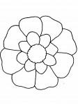 pobarvanke-rastline-13