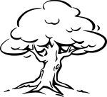 pobarvanke-rastline-18