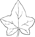 pobarvanke-rastline-22