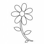 pobarvanke-rastline-33