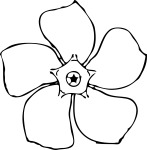 pobarvanke-rastline-34