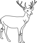 pobarvanke-zivali-75