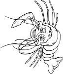 pobarvanke-zivali-79