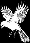 pobarvanke-zivali-86