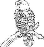 pobarvanke-zivali-90